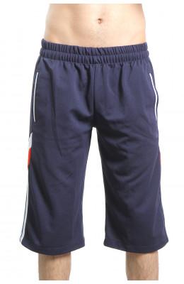 Мужские шорты 17.080_Msh