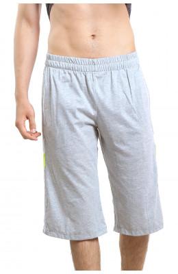 Мужские шорты  17.081_Msh